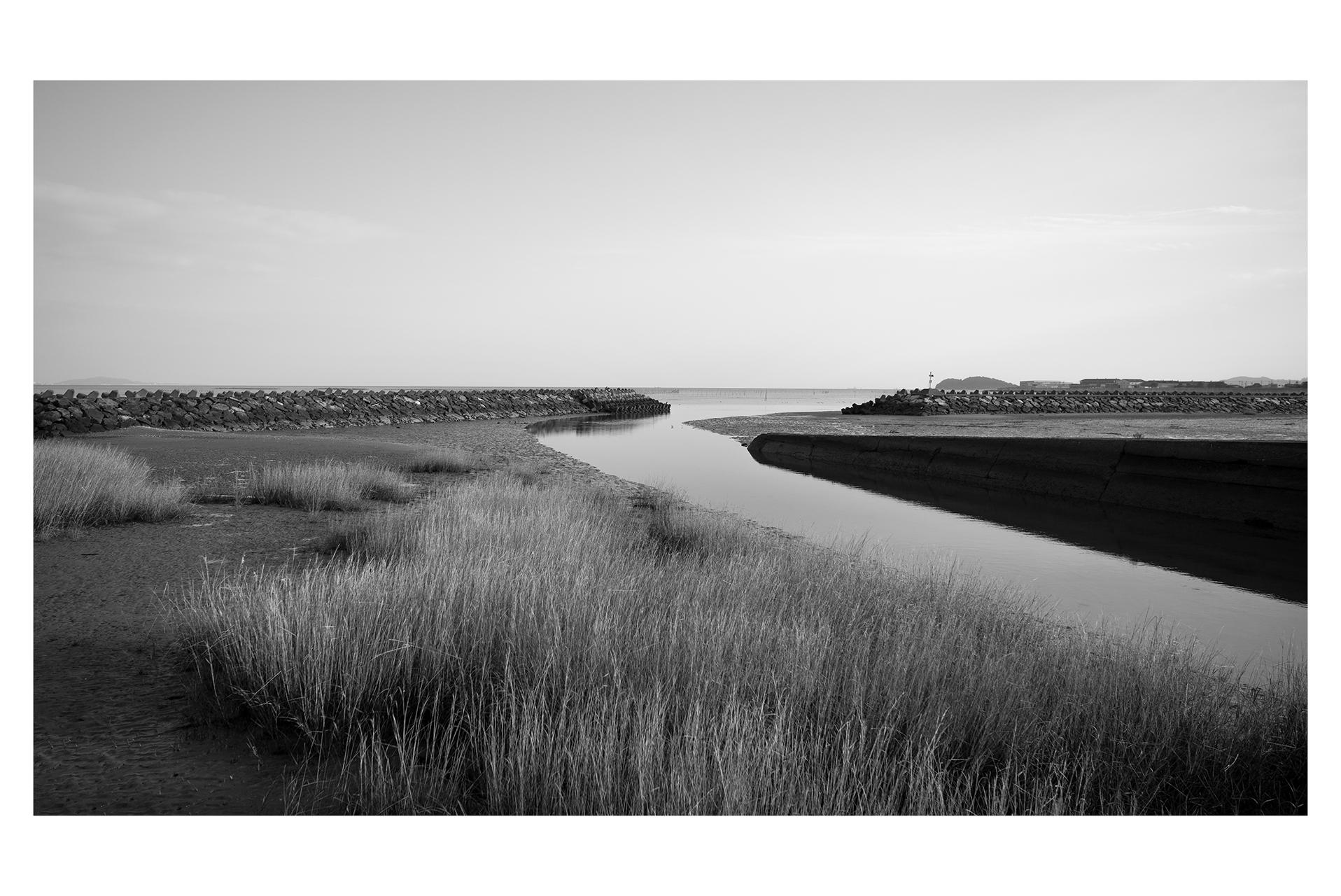 1-fb-モノクロ-ライカ-風景-干潟-L1000416-2