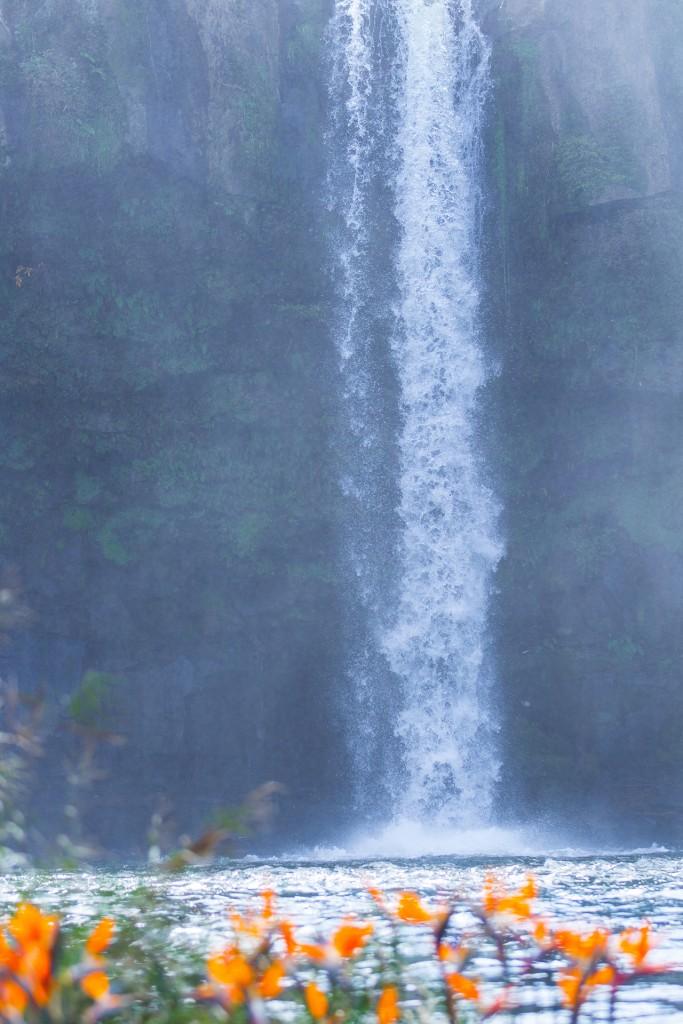 1-fb-原尻の滝-009